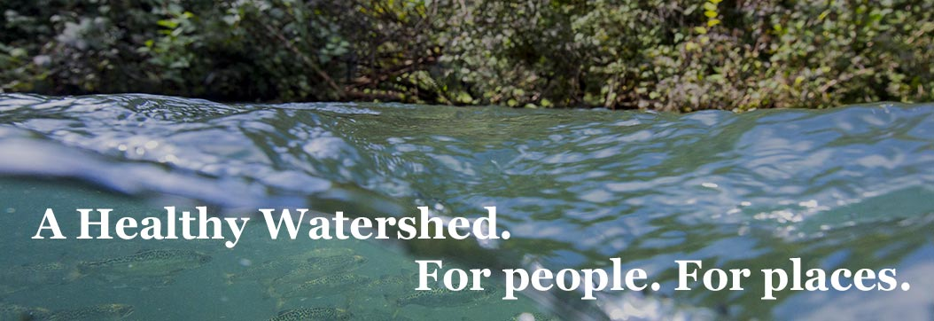 Invest in a healhy watershed