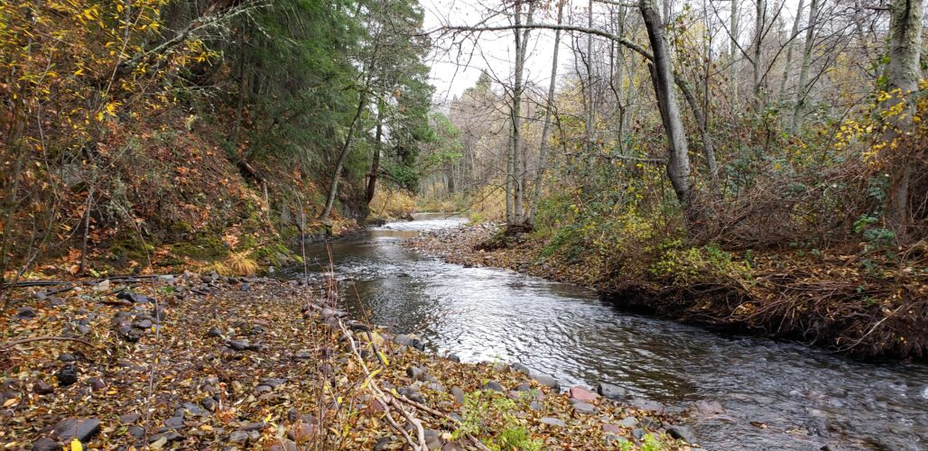 South Fork Little Butte Creek project