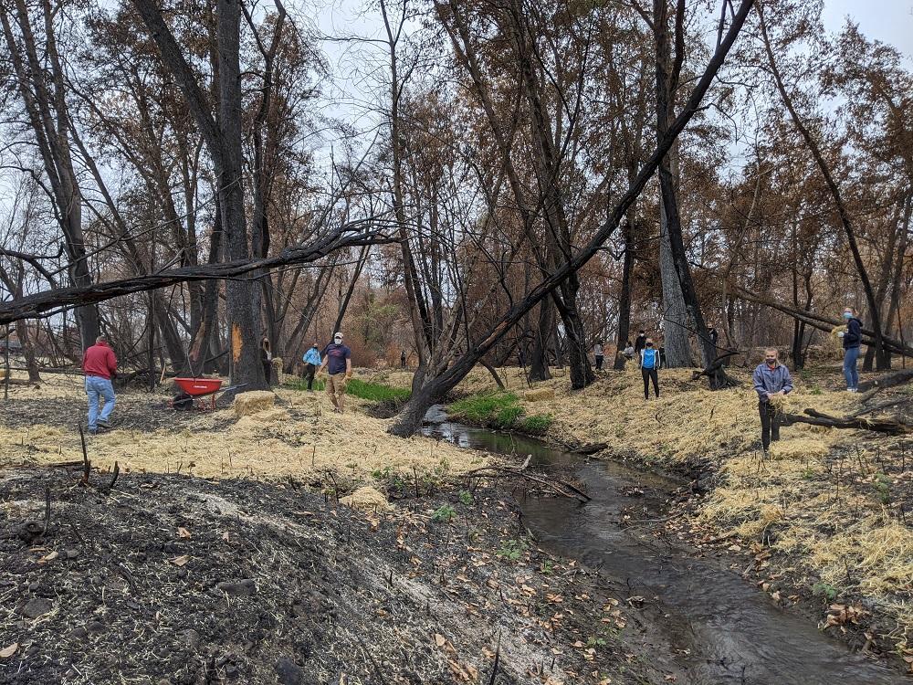 Work along Bear Creek Greenway